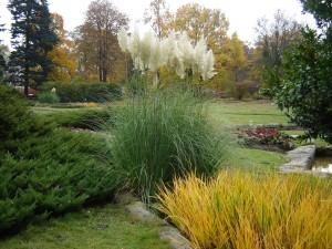 Botaniczny (132)