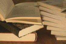 literature-3324039__340