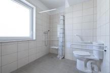 Biskupińska łazienka niepełnosp Agrobex
